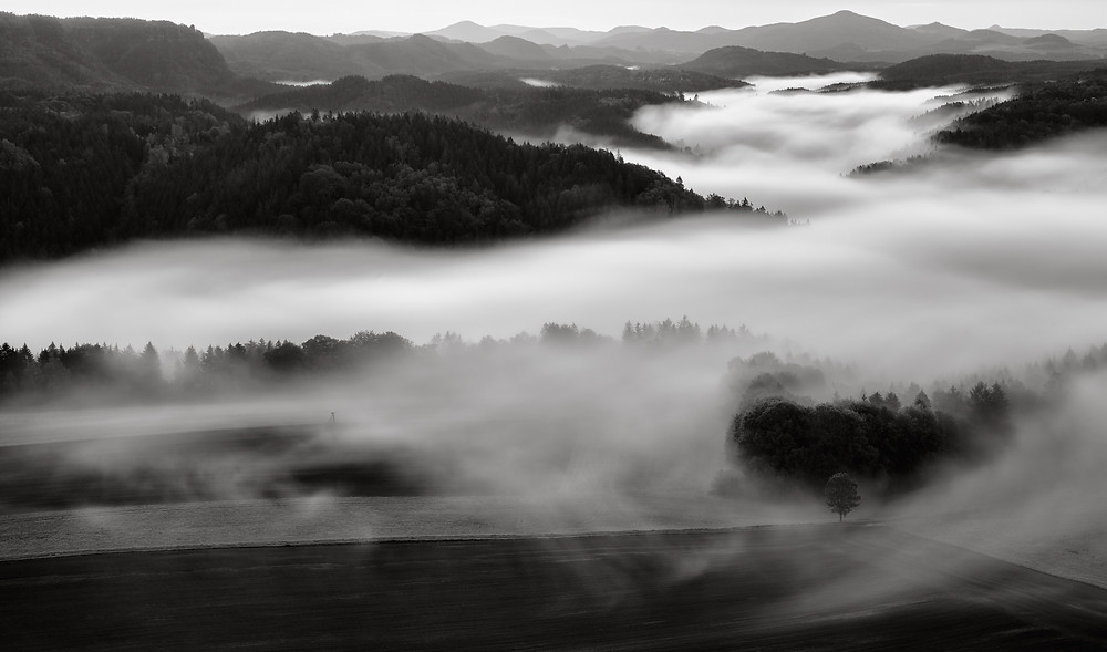 rolling fog over landscape