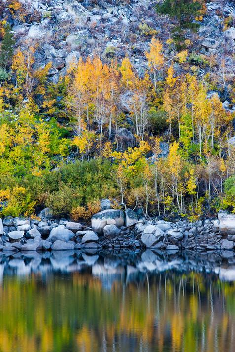 Lake's Edge.jpg
