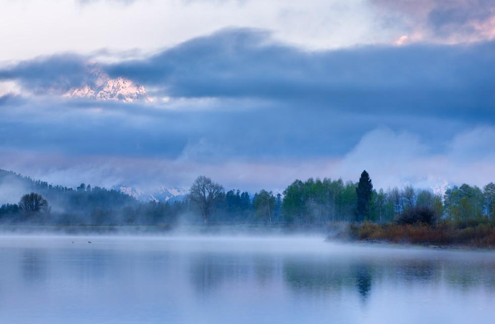 Shrouded in Fog.jpg