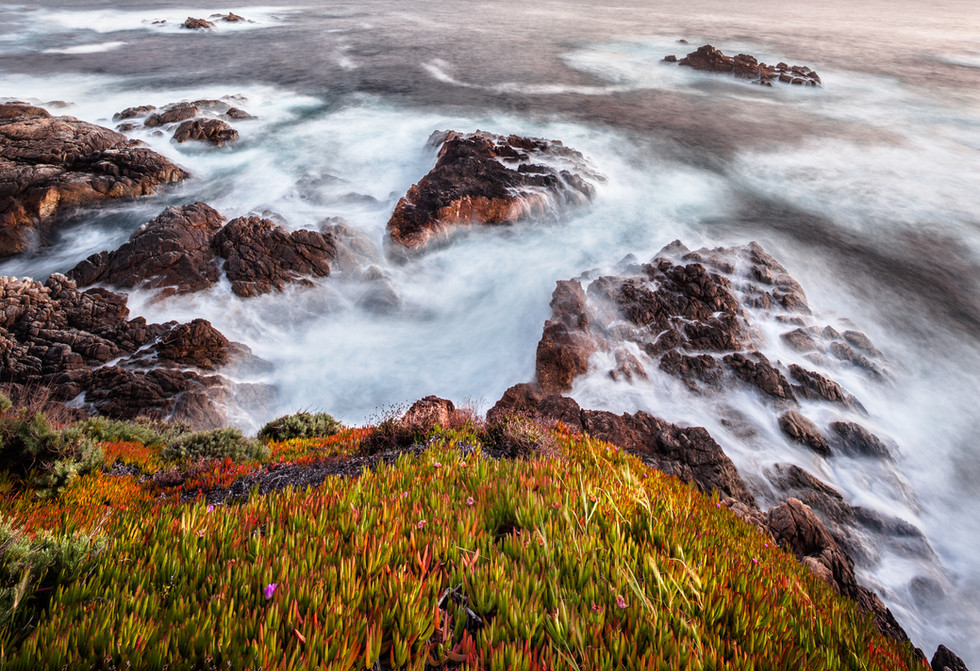 Big Sur Coast in Spring.jpg