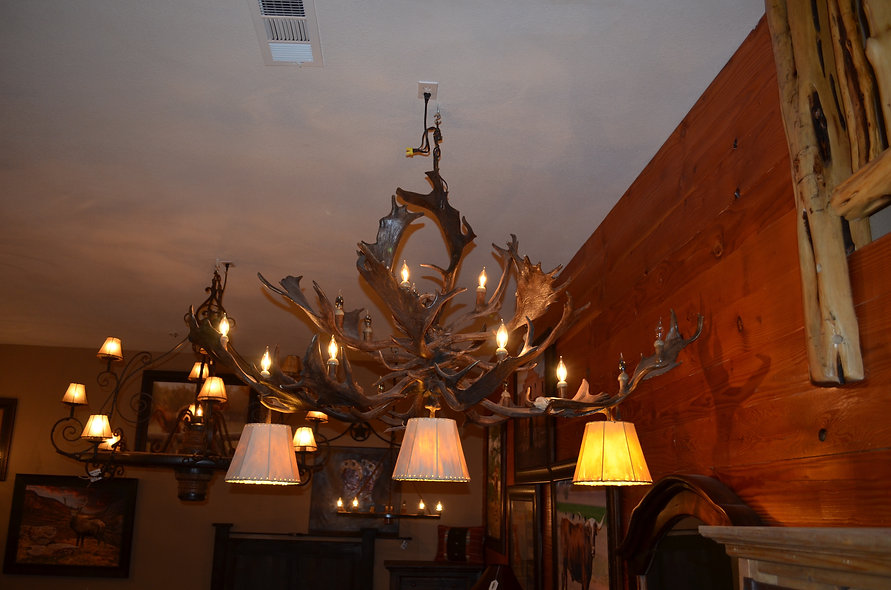 5' Genuine Fallow Antler Chandelier