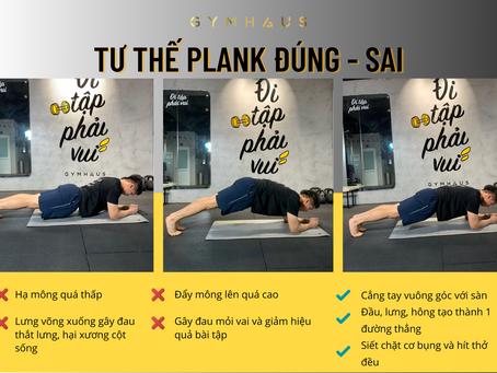 Tư thế Plank ĐÚNG/ SAI - GYMHAUS