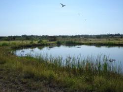 Zambezi Country Estate.jpg