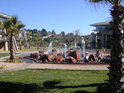 Constantia Park.jpg