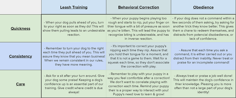 Training examples.PNG