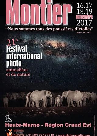 Affiche Montier 2017.JPG