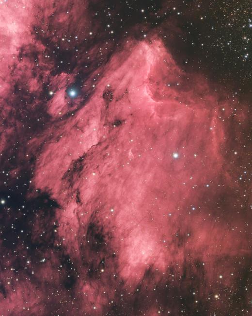 IC 5070 - Nébuleuse du Pélican
