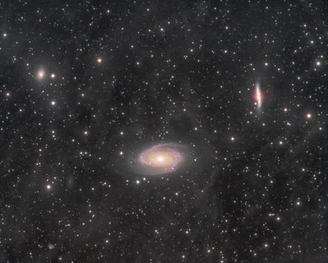 Groupe de M81 et IFN