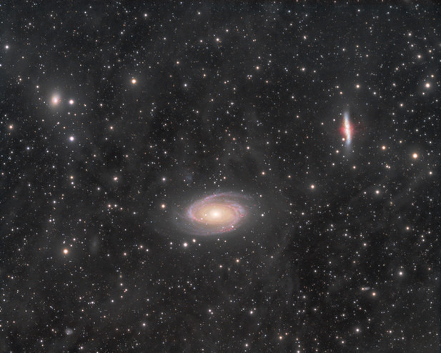 M81 group and IFN