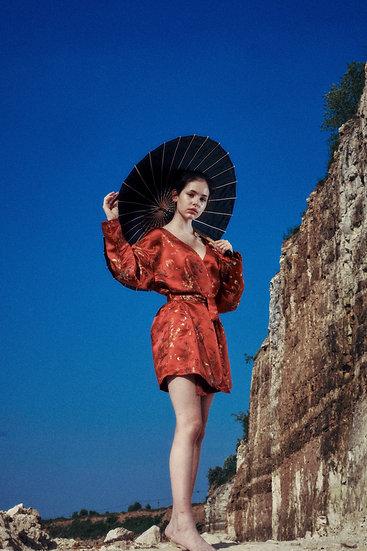 Dragon kimono-dress