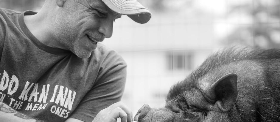 Todd Friedman: Arthur's Acres