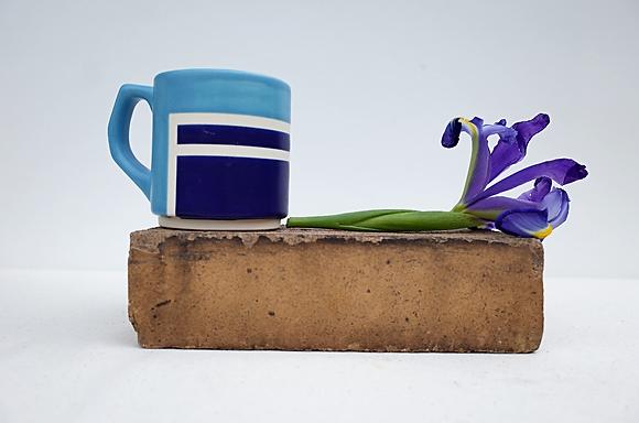 Cobalt House Mug