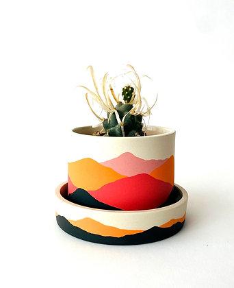 Low Sonora Planter
