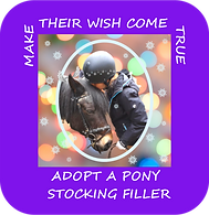 Broadlands RDA, Medstead - Make Their Wish Come True 3.png