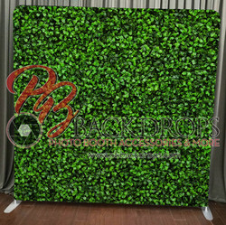 Green Hedge - Open Air