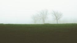 Fog_20180504-2521