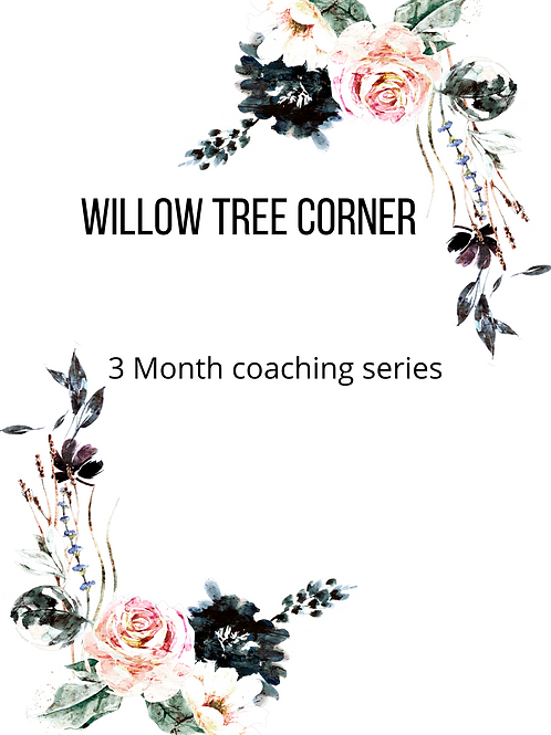 3 month coaching series
