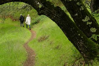Hiking Guide in Napa