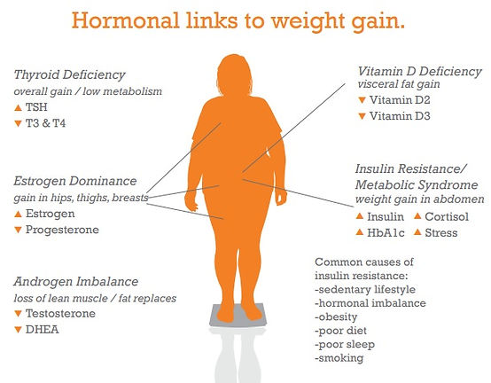 Hormonal Links to Weigh Gain Dr. Beckstead