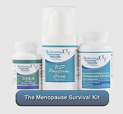 The Menopause Survival Kit
