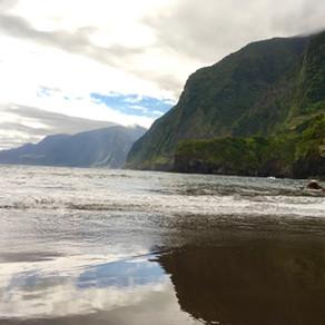 Chegamos na Ilha da Madeira, em Portugal, com a TAP