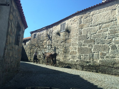 Roteiro no Norte de Portugal: Sapiãos, Carvalhelhos e Montalegre