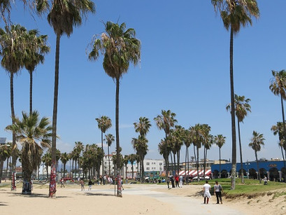 Em Venice Beach, em Los Angeles