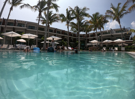 Passeio de barco com The Perry Hotel
