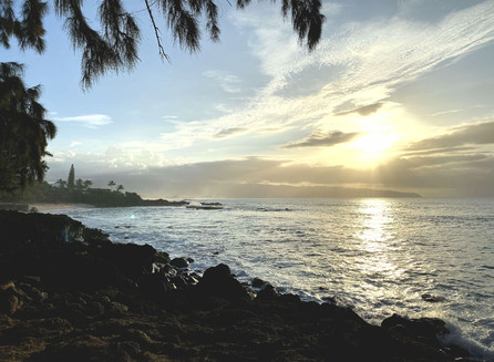 Praias de North Shore com a Gracias Hawaii Tours