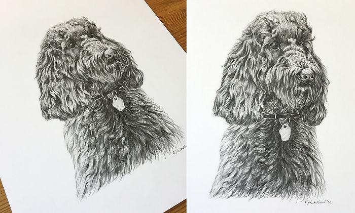 Pencil Dog.jpg