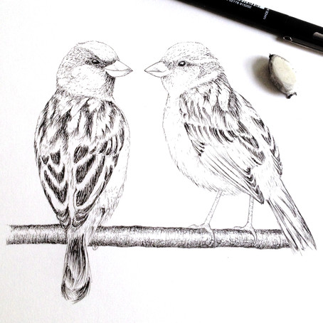 Love Birds - My First Wedding Commission