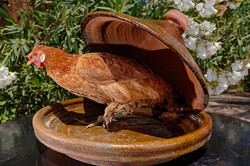 Poulet traditionnel