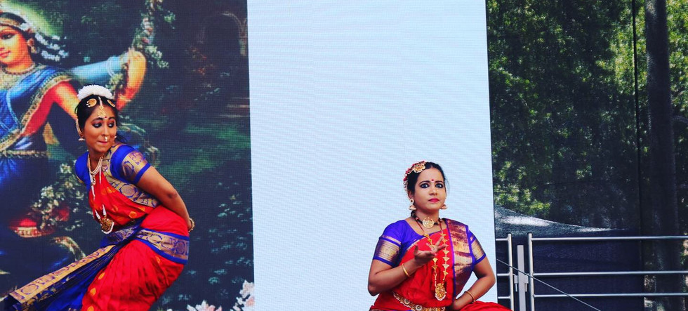 Indian Fest , cologne