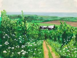 Isle of Wight farm.jpg