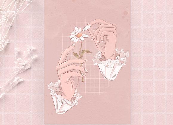 Postcard - Daisy