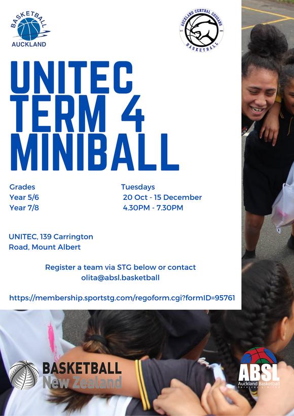 Unitec Term 4 Miniball.png