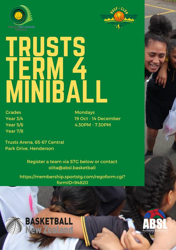 Trusts Term 4 Miniball.png