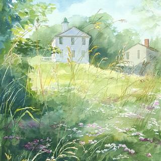 "Judy""s Summer Day"