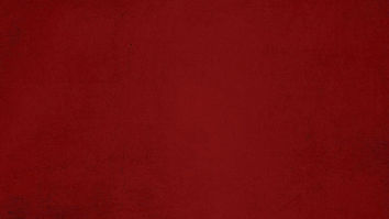 Red Velvet V2 - Website.jpg
