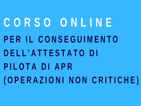 PILOTA PER OPERAZIONI NON CRITICHE ONLINE