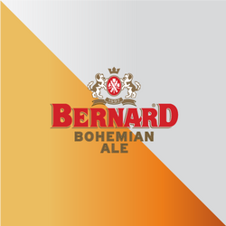 bernard_serv_web2.png