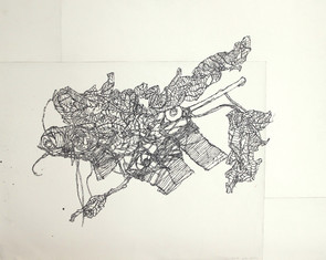 19344, Untitled, 2010, ink on paper, 60x76 cm.jpg
