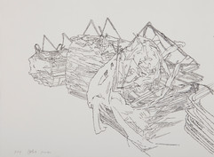 24356, Untitled, 2014, ink on paper, 30x40 cm.jpg
