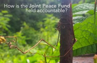 How is the Joint Peace Fund held accountable?: An interview with DFID conflict adviser Steve Ainswor