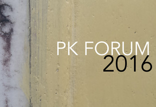 PK Forum in 2016 and most popular blogs