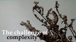 Sexual Health and Land rights: The challenge of complexity