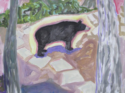 Bears are Light