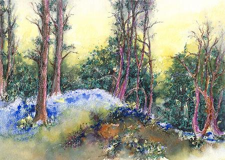 Spring Bluebells at Hartshill Hayes
