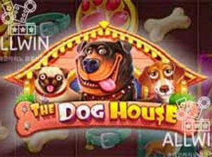 강아지하우스.jpg