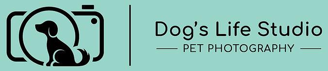 dls-logo-header3.jpg